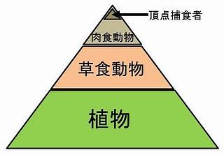 エルトンのピラミッド.jpg