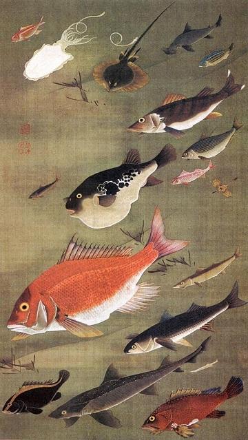 群魚図(鯛).jpg