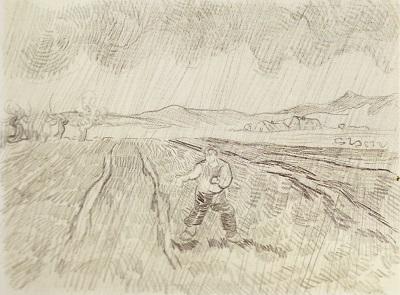 雨中の畑で種を蒔く人.jpg